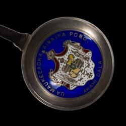 Hawaiin Coin Ladle