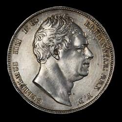William IV Halfcrown