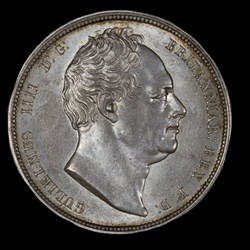 William IV Halfcrown