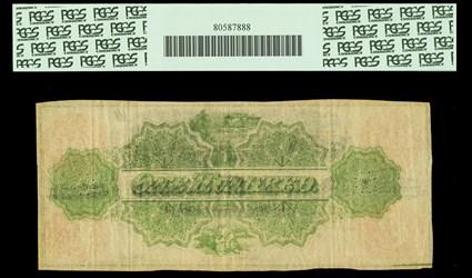 Lot 19202