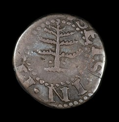 Pine Tree Six-Pence