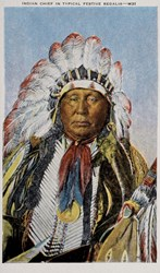 Indian Chief in Typical Festive Regalia- M31