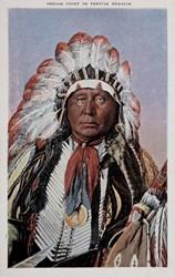 Indian Chief in Festive Regalia