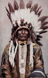 Chief Charging Bear