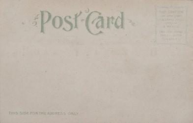 Reverse side: Official Souvenir, World's Fair - St. Louis 1904, The Art Palace