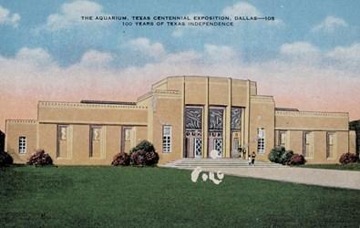 The Aquarium, Texas Centennial Exposition, Dallas�105