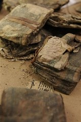 U.S. AUTHORITIES INVESTIGATE BURIED LOOT