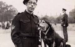 DOG'S 1945 DICKIN MEDAL SOLD AT AUCTION