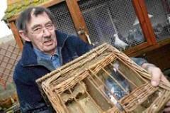 MAN BUILDS MEMORIAL TO DICKIN-MEDAL WINNING PIGEONS
