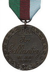 DICKIN MEDAL PROPOSED FOR TALIBAN-FIGHTING DOG THEO