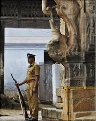 MORE ON THE MULTI-$BILLION TREASURE DISCOVERED IN INDIA