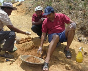DIGGING OUR OWN GRAVE: KAVAN RATNATUNGA'S ARCHAEOLOGICAL DIG