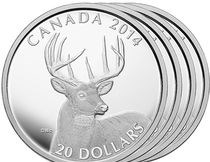 ARTICLE FEATURES CANADIAN WHITE-TAILED DEER COIN ARTIST