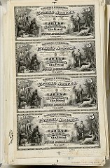 SMITHSONIAN'S RAPID CAPTURE DIGITIZATION