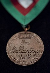 MARIA DICKIN AND THE DICKIN MEDAL