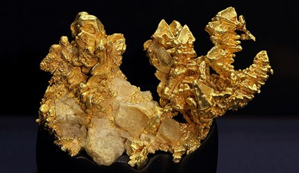 PEABODY MUSEUM EXHIBITS CALIFORNIA GOLD
