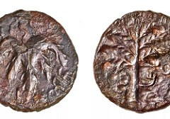 JEWISH BAR KOKHBA REVOLT COIN FOUND IN CAVE