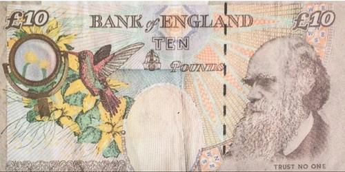 BRITISH MUSEUM ACQUIRES BANKSY £10 NOTE