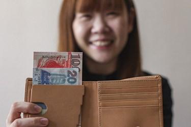 WALLET HELPS IDENTIFY BANKNOTE DENOMINATIONS